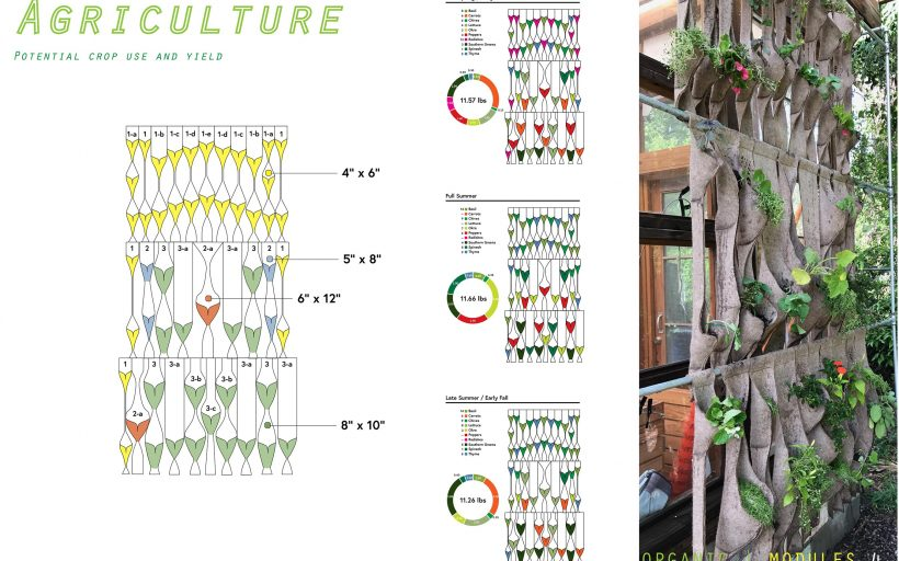 Organic Modules: Modular Wallscapes for Shade and Food