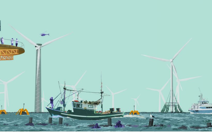 Seaweed & Chips: New Aquaculture Industry for Morecambe Bay
