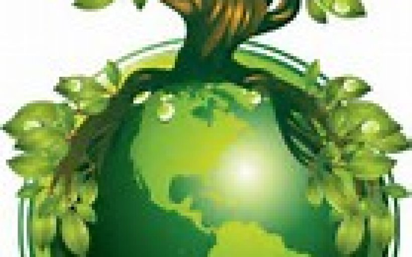Combating Climate Change Through Green Afforestation By Sustainability