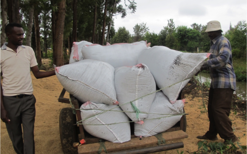 A carbon-negative fertilizer that helps rural farmers improve their yields by 30%, income by 50%, and decrease irrigation