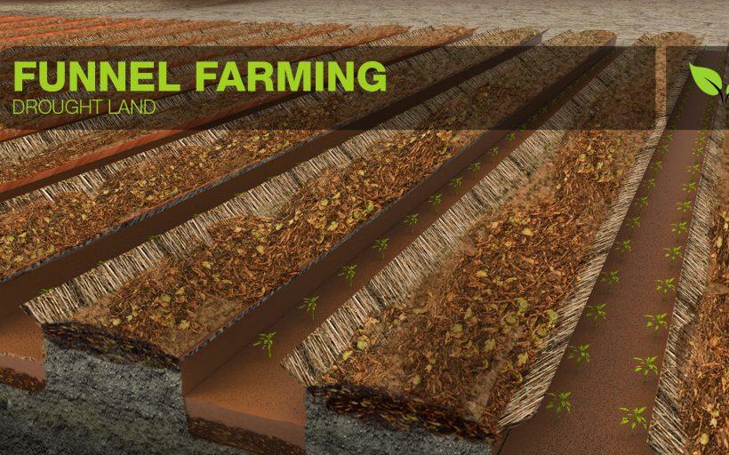Funnel farming