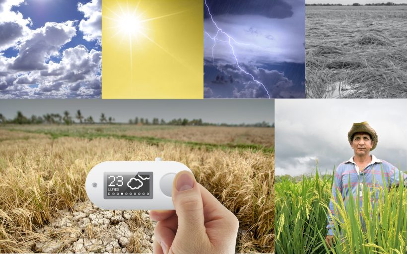 Oolán Mini: Low-cost Weather Forecast for Farmers