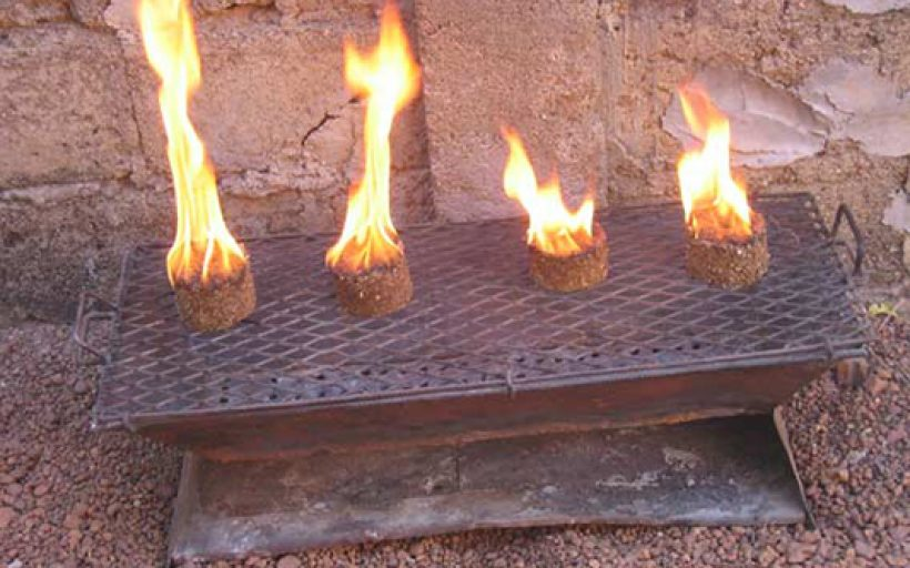 Promote the use of biomass briquettes as an alternative energy source.