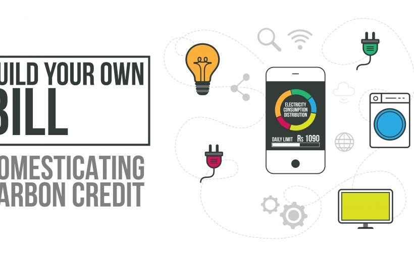 BYOB (Build Your Own Bill) : Domesticating Carbon Credit