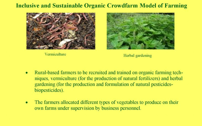 Inclusive Organic CrowdFarm in The Wake of Climate Change